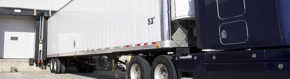 Imported foods and exportation | Cold Transportation and